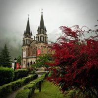 Vista de los jardines y la Basílica